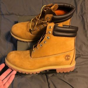 Brand New Timberland 6inch Boot
